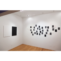 Michael Theodore Installation view