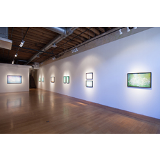 Christopher Russell Installation view
