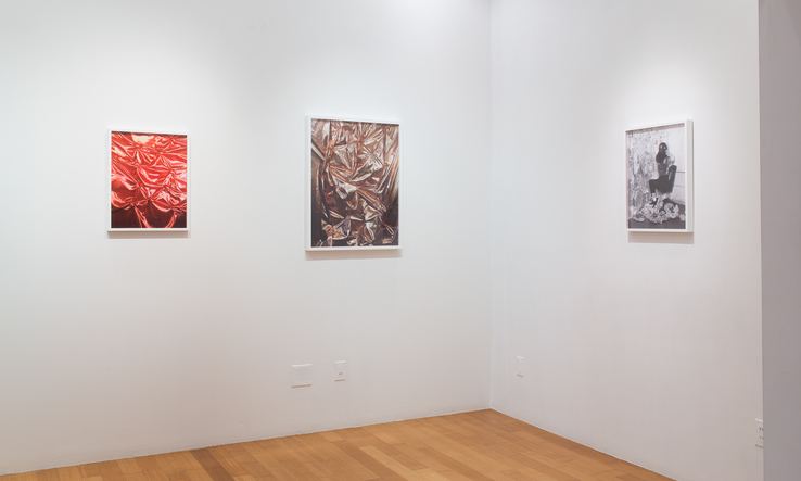 Whitney Hubbs - Installation view
