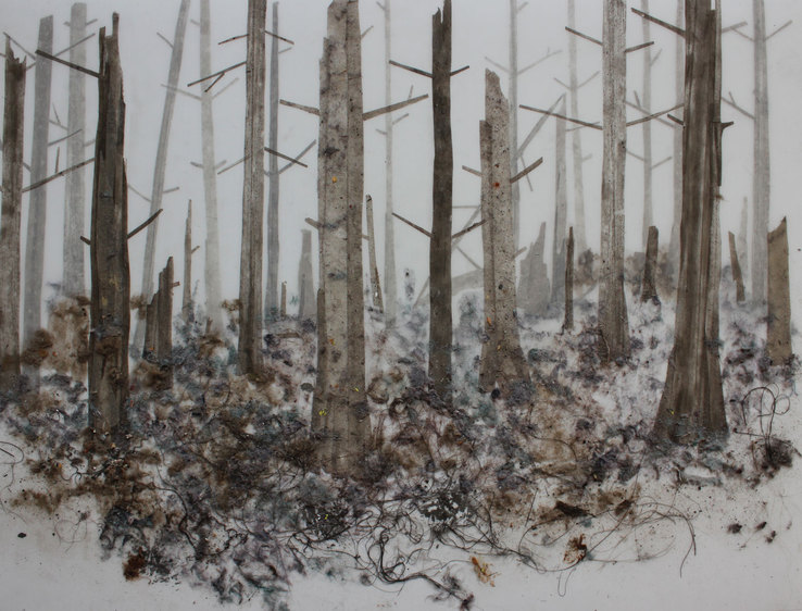 Hong Seon Jang - Dusty Forest